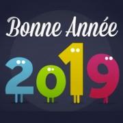 Carte de voeux : Bonne année