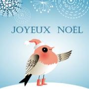 Carte de voeux : L'oiseau de Noël