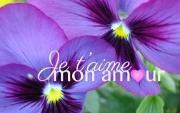 Carte de voeux : ...mon amour