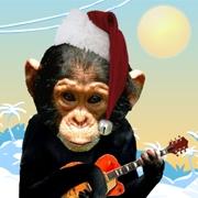 Carte de voeux : Singeries de Noël