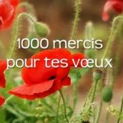 Carte de voeux : 1000 mercis et bonne année