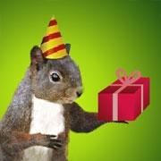 Carte de voeux : Un anniversaire explosif !