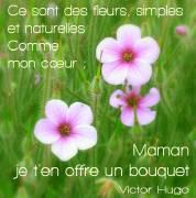 Carte de voeux : Comme mon cœur (V. Hugo)