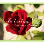 Carte de voeux : ... Mon Amour