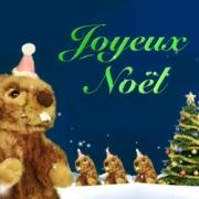 Carte de voeux : Joyeux Noël des marmottes