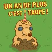 Cartes Humoristiques D Anniversaire Envoyez Une Carte Humoristique