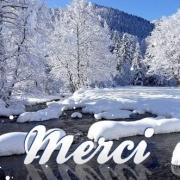 Carte de voeux : Merci pour ce Noël