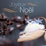 Carte de voeux : Noël sous la neige