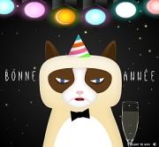 Carte de voeux : Les voeux du chat bougon