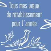 Carte de voeux : Tous mes vœux de rétablissement