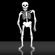 Carte de voeux : Le rythme dans les os